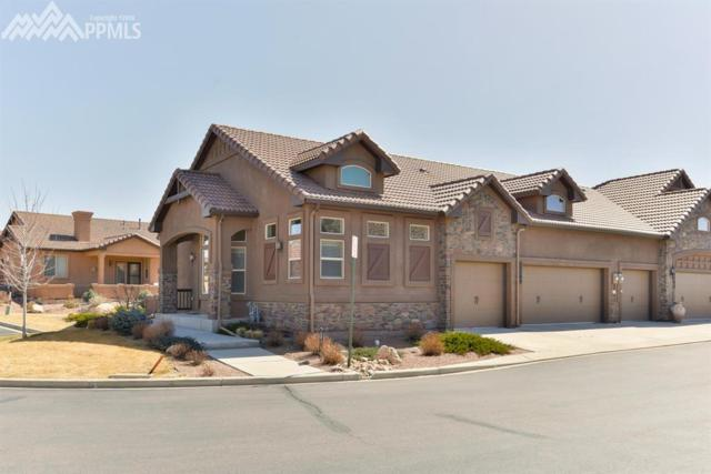 13145 Cake Bread Heights, Colorado Springs, CO 80921 (#7473347) :: Action Team Realty