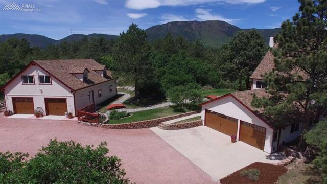 3020 Vandenberg Avenue, Monument, CO 80132 (#7473433) :: Jason Daniels & Associates at RE/MAX Millennium