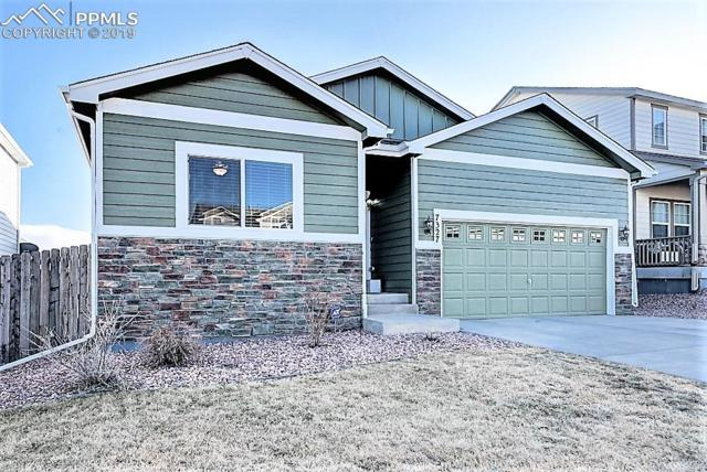 7327 Willow Pines Place, Fountain, CO 80817 (#7475334) :: CENTURY 21 Curbow Realty