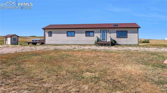 29675 Paint Mine Road, Calhan, CO 80808 (#7476670) :: Tommy Daly Home Team