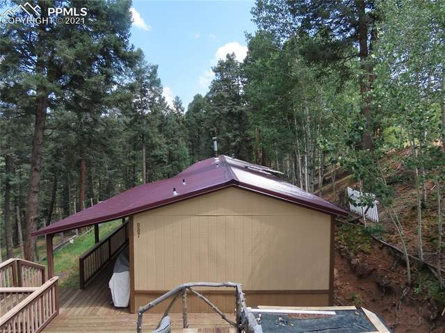 887 Bennett Drive, Cripple Creek, CO 80813 (#7483975) :: Tommy Daly Home Team