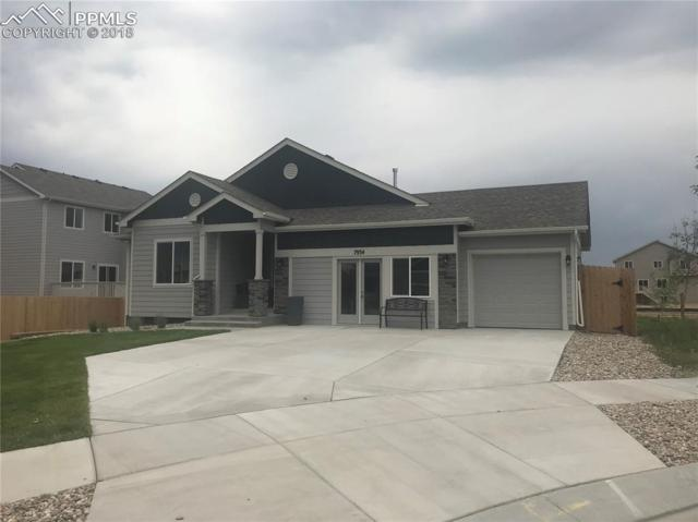 7934 Broderick Court, Colorado Springs, CO 80927 (#7485880) :: Fisk Team, RE/MAX Properties, Inc.