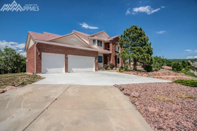 20 Seagull Circle, Colorado Springs, CO 80921 (#7489368) :: 8z Real Estate