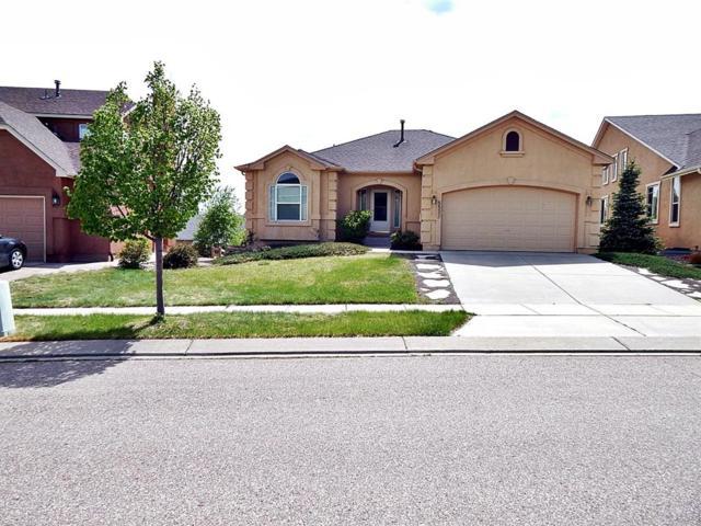 5537 Calvert Creek Drive, Colorado Springs, CO 80924 (#7492929) :: 8z Real Estate