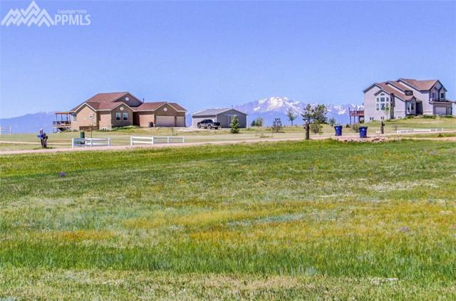 12225 N Conestoga Trail, Elbert, CO 80106 (#7492955) :: 8z Real Estate