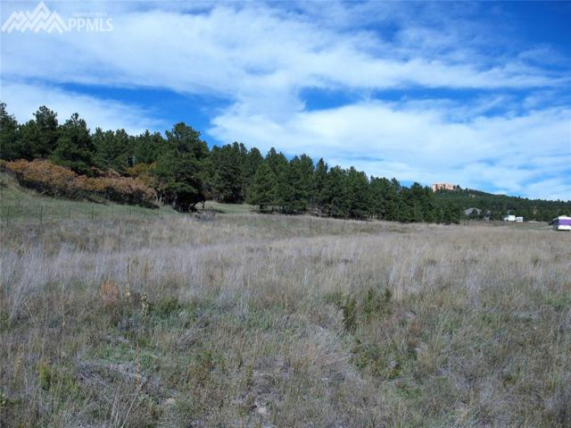 Illumination Point, Palmer Lake, CO 80133 (#7499034) :: CENTURY 21 Curbow Realty