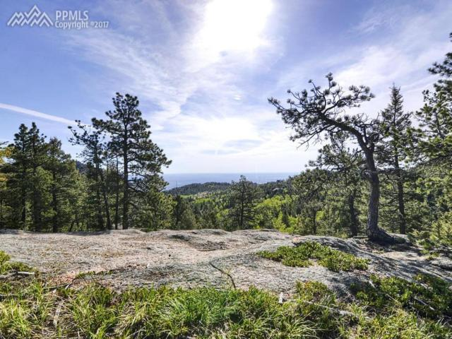 238 Waterfall Loop, Manitou Springs, CO 80829 (#7503375) :: Action Team Realty