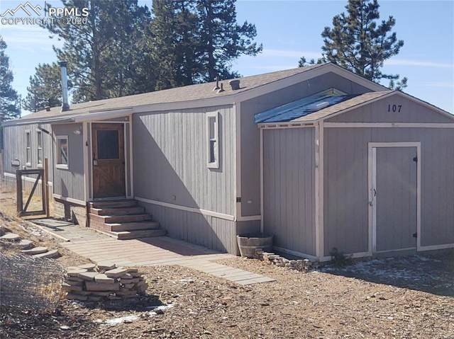 107 Starview Trail, Divide, CO 80814 (#7503671) :: Action Team Realty