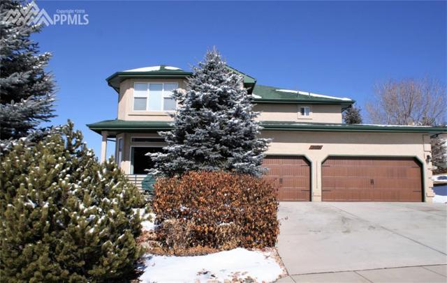 1390 Almagre Peak Drive, Colorado Springs, CO 80921 (#7505073) :: 8z Real Estate