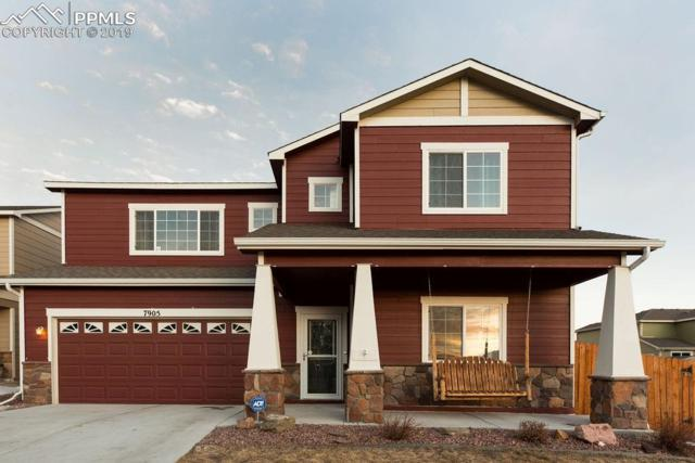 7905 Wagonwood Place, Colorado Springs, CO 80908 (#7508686) :: 8z Real Estate