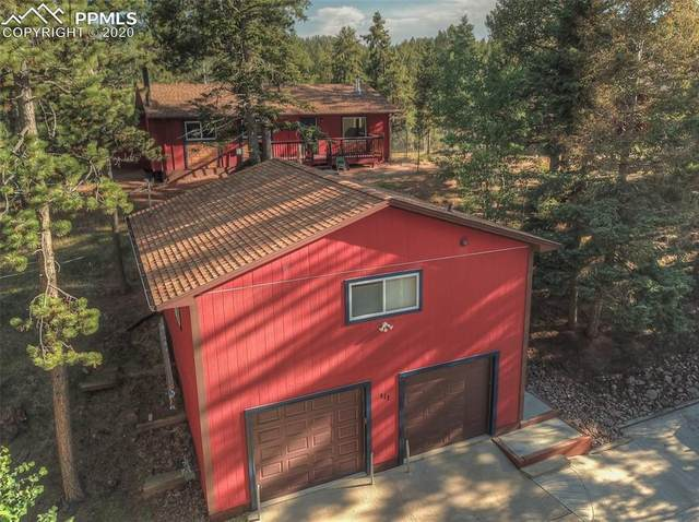 111 E Pine Ridge Avenue, Woodland Park, CO 80863 (#7509078) :: Tommy Daly Home Team