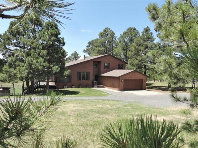 14930 E Coachman Drive, Colorado Springs, CO 80908 (#7509964) :: 8z Real Estate