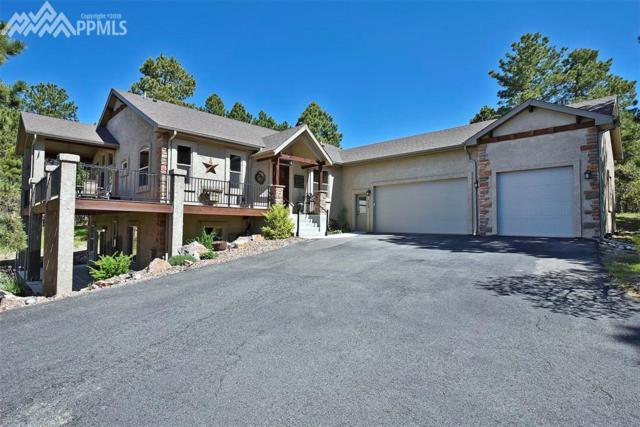 669 Winding Hills Road, Monument, CO 80132 (#7512051) :: The Daniels Team