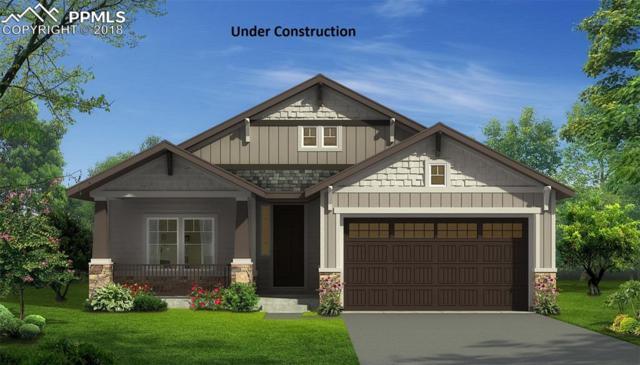 1177 Man O'war Way, Colorado Springs, CO 80921 (#7517650) :: 8z Real Estate