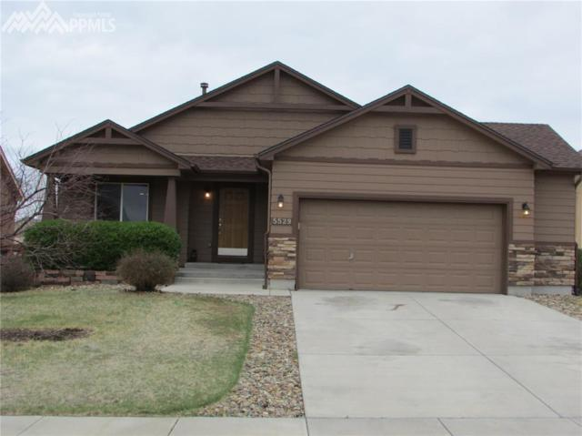 5529 Barnstormers Avenue, Colorado Springs, CO 80911 (#7522071) :: Action Team Realty