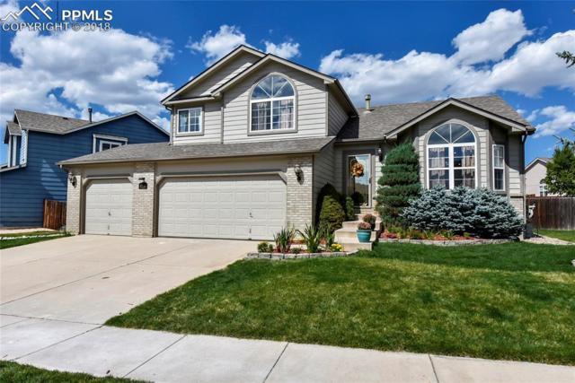 8235 Andrus Drive, Colorado Springs, CO 80920 (#7522952) :: The Peak Properties Group
