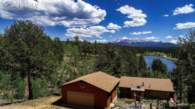 6 Pike View Circle, Divide, CO 80814 (#7527162) :: The Peak Properties Group