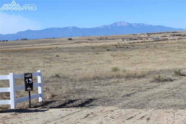 17946 Prairie Coach View, Calhan, CO 80808 (#7529196) :: Action Team Realty