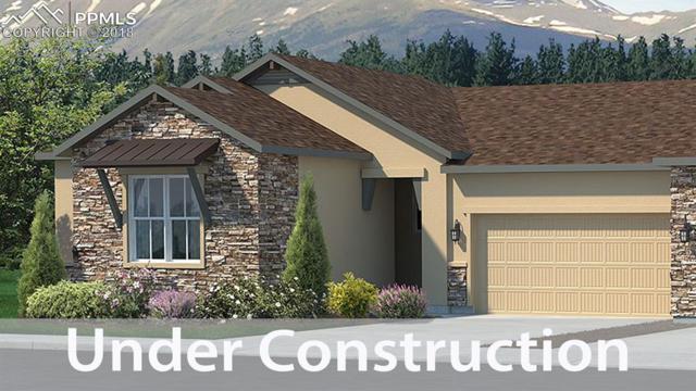 6431 Adamants Drive, Colorado Springs, CO 80924 (#7530379) :: The Treasure Davis Team