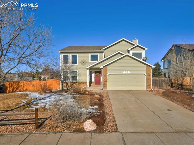 8310 Camfield Circle, Colorado Springs, CO 80920 (#7530986) :: The Hunstiger Team