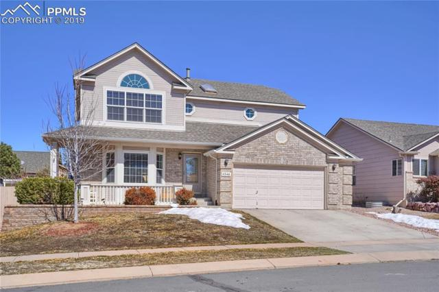 4546 Bridle Pass Drive, Colorado Springs, CO 80923 (#7536806) :: Venterra Real Estate LLC