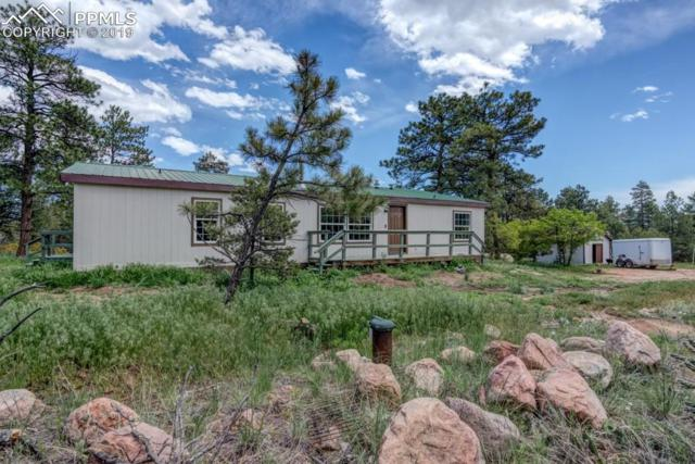 2905 County 103 Road, Florence, CO 81226 (#7540886) :: Fisk Team, RE/MAX Properties, Inc.