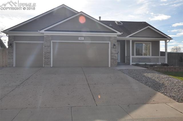 802 Daffodil Street, Fountain, CO 80817 (#7541307) :: Jason Daniels & Associates at RE/MAX Millennium