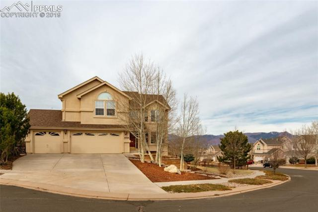 4519 Clark Fork Place, Colorado Springs, CO 80923 (#7549903) :: Perfect Properties powered by HomeTrackR