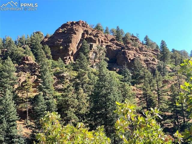 177 Upper Sun Valley Lane, Manitou Springs, CO 80829 (#7550407) :: The Treasure Davis Team | eXp Realty