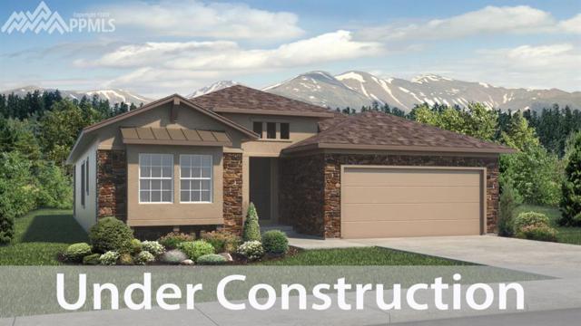 2033 Walnut Creek Court, Colorado Springs, CO 80921 (#7550909) :: Jason Daniels & Associates at RE/MAX Millennium