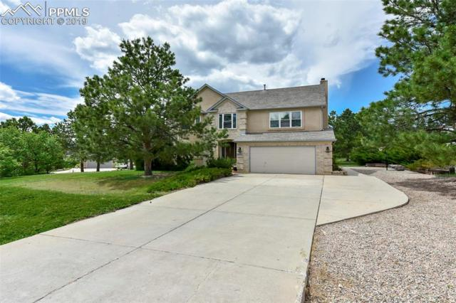 20255 Silver Horn Lane, Monument, CO 80132 (#7555914) :: Tommy Daly Home Team