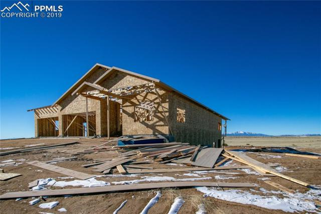 19030 Good Life View, Calhan, CO 80808 (#7558582) :: Tommy Daly Home Team