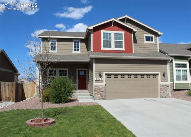 6446 Stingray Lane, Colorado Springs, CO 80925 (#7558739) :: Fisk Team, RE/MAX Properties, Inc.