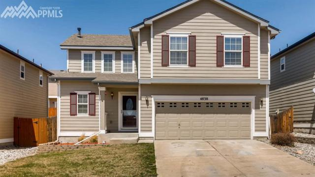 4838 Turning Leaf Way, Colorado Springs, CO 80922 (#7560542) :: 8z Real Estate