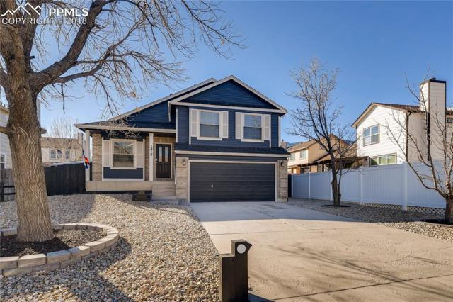 1313 Grass Valley Drive, Colorado Springs, CO 80906 (#7561261) :: The Kibler Group