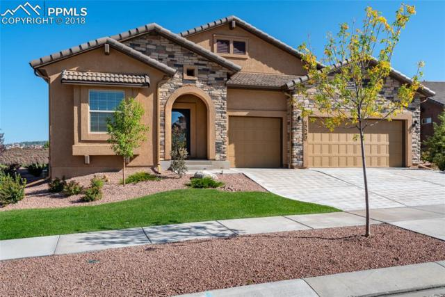 13542 Penfold Drive, Colorado Springs, CO 80921 (#7561359) :: Action Team Realty