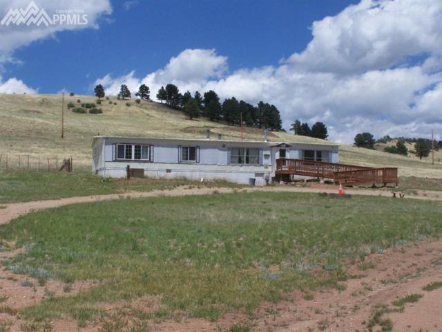 1620 Teller 1 Road, Cripple Creek, CO 80813 (#7562001) :: Harling Real Estate