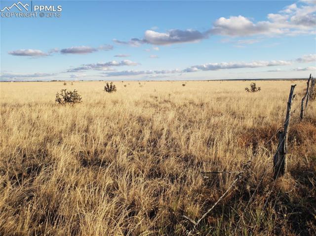 16585 Degroot Road, Colorado Springs, CO 80928 (#7562270) :: The Peak Properties Group