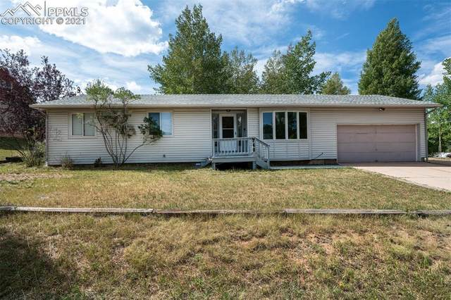 740 E Northwoods Drive, Woodland Park, CO 80863 (#7573468) :: Tommy Daly Home Team
