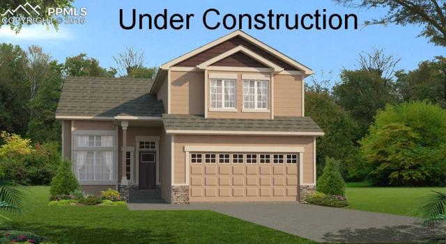 10054 Exeter Trail, Peyton, CO 80831 (#7580420) :: The Daniels Team