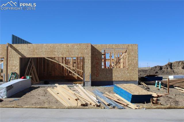 4258 Hessite Loop, Colorado Springs, CO 80938 (#7580766) :: Harling Real Estate