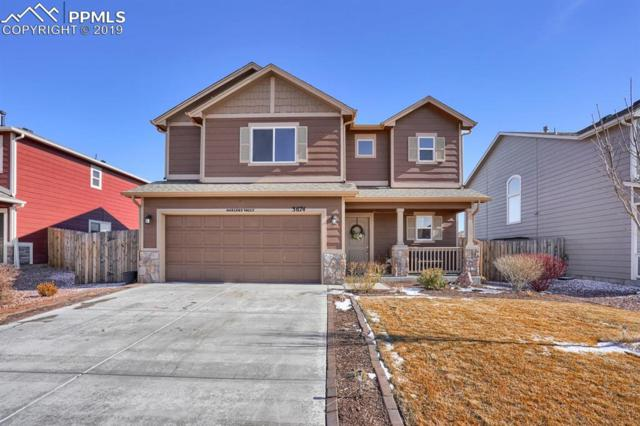 3674 Saguaro Circle, Colorado Springs, CO 80925 (#7584079) :: 8z Real Estate