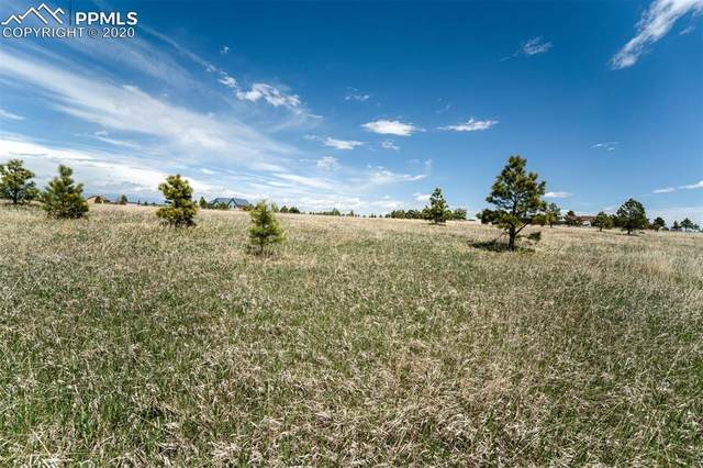 17615 Blacksmith Drive, Peyton, CO 80831 (#7584366) :: The Kibler Group