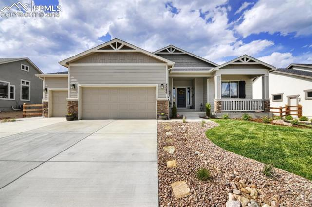 3046 Waterfront Drive, Monument, CO 80132 (#7588783) :: The Hunstiger Team