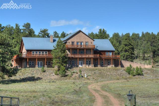 750 Old Kathleen Trail, Guffey, CO 80820 (#7589176) :: 8z Real Estate