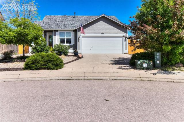 4291 Addax Court, Colorado Springs, CO 80922 (#7589624) :: The Daniels Team