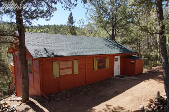 580 Timber Ridge Road, Divide, CO 80814 (#7592833) :: 8z Real Estate