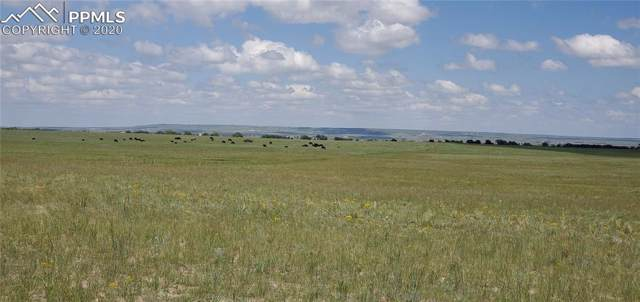 16625 Judge Orr Road, Peyton, CO 80831 (#7593153) :: Action Team Realty