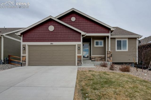 785 Tailings Drive, Monument, CO 80132 (#7595965) :: The Treasure Davis Team