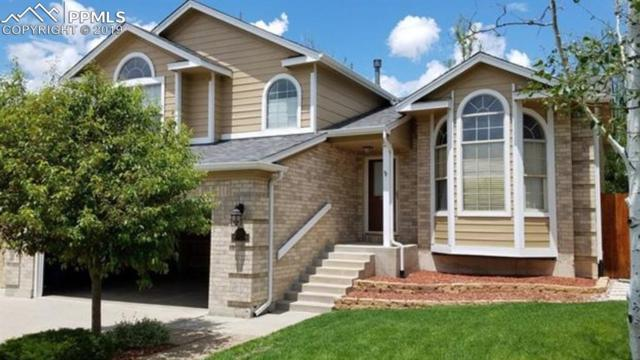 3752 Pony Tracks Drive, Colorado Springs, CO 80922 (#7598474) :: Perfect Properties powered by HomeTrackR